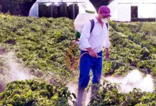 Novi termin za tečaj održive upotrebe pesticida je 1. veljače