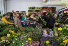 Poziv cvjećarima za posjet Sajmu cvijeća Ortogiardino