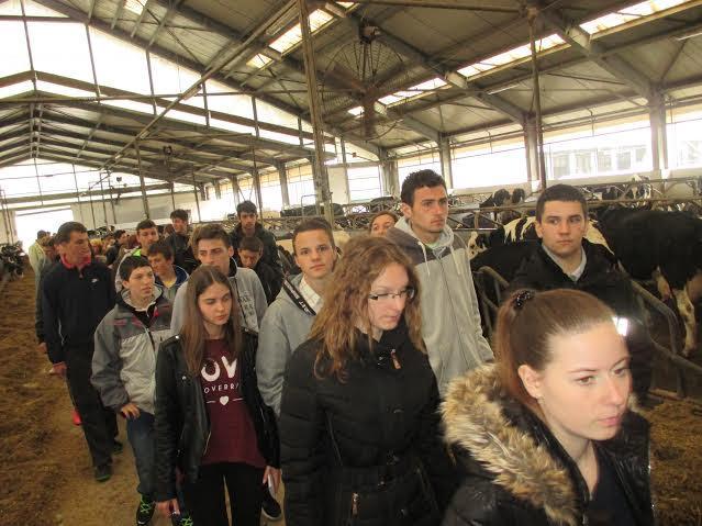 Učenice i učenici Poljoprivrednog učilišta posjetili tvrtku Belje u Dardi