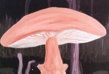 Izložba Ivana Tudeka i Ivana Dujmušića