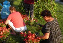 """Ovo su dobitnici nagrada u sklopu akcije """"Uklonimo smeće, posadimo cvijeće"""""""