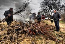 Obitelj Šafran iz Brezničkog Huma morala spaliti 6625 trsova traminca