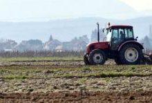 Potpore mladim poljoprivrednicima i do 50 tisuća eura