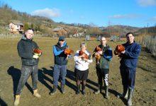 Kvartet poduzetnih ugostitelja pokrenuo uzgoj kokoši hrvatica