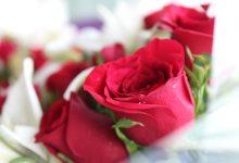 Radionicu će održati vrsni slovenski majstor cvjetnih aranžmana Simon Ogrizek