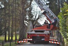 Iz Spomen parka Antuna Mihanovića u Klanjcu uklonjene još dvije jele