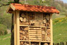 U hotel za kukce uselili prvi stanari – solitarne pčele