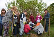 Mališani u Krušljevu Selu uređuju tradicijski zagorski vrt, sade cvijeće i uče o zdravoj prehrani