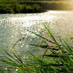 U jezeru se tijekom ribolova utopio 40-godišnjak