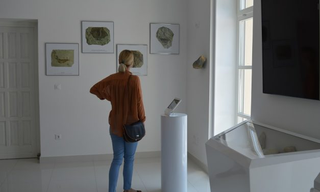 Važan aspekt turističke priče Radoboja, koji svjedoči o bogatoj arheološkoj, rudarskoj i geološkoj prošlosti tog područja