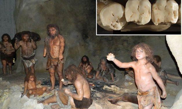 Već prije 130 tisuća godina znali su kako otkloniti zubobolju i riješiti krivi rast zuba