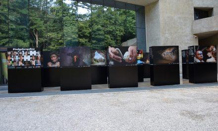 """""""ICE AGE EUROPE NOW"""": U Muzeju krapinskih neandertalaca pogledajte atraktivnu putujuću izložbu međunarodnog karaktera"""