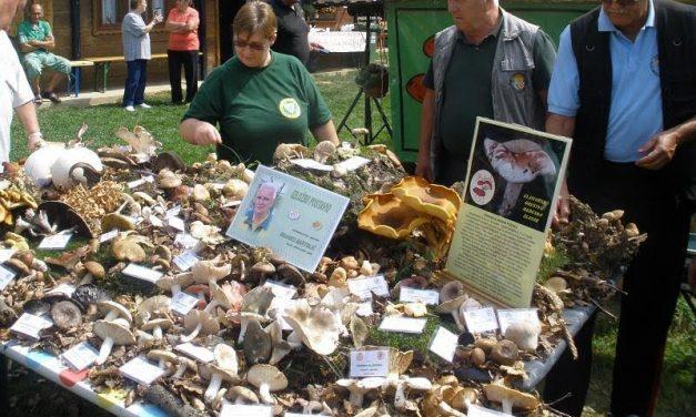 Sakupljanje gljiva, izložba, stručno predavanje i druženje gljivara 2. rujna u Martinščini