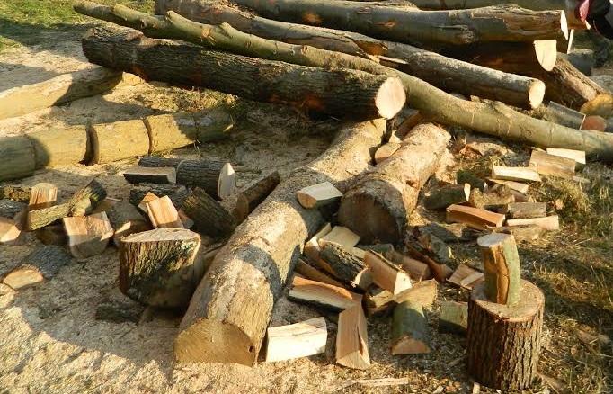 Ukradena drva, elektromotor i cijev roštilja pečenjare