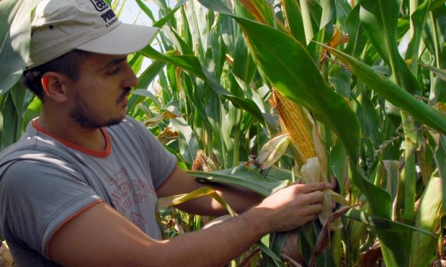 Budući poljoprivrednici moći će doznati što je OPG i kako ga otvoriti, kako funkcioniraju zadruge, što je to ekološka poljoprivreda te kako se financirati kroz natječaje