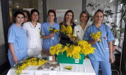 Simboličnom kupnjom mimoze i vi podržite borbu protiv raka vrata maternice