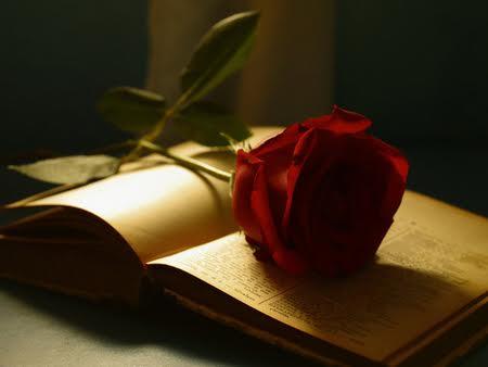U subotu u Muzeju Žitnica uživajte u Večeri ljubavne poezije
